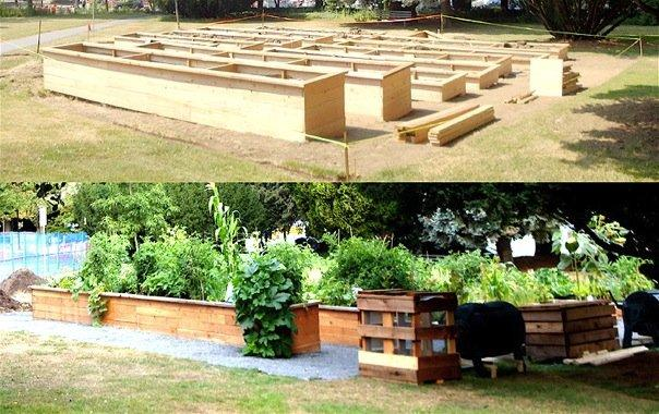 Site Transformation: Vancouver City Hall Community Garden |